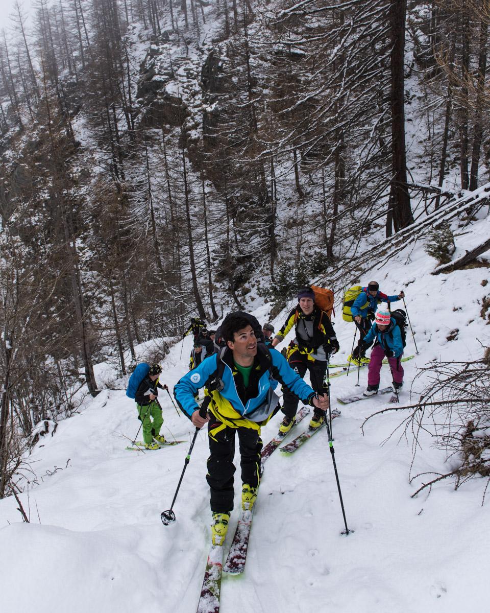 Le début de la montée se fait dans une neige bien lourde et collante en forêt : un coup de fart sur nos peaux arrangera bien les choses !