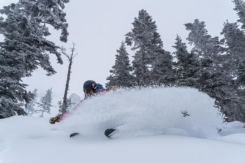 Yukon Canada ski randonnée descente poudreuse virage foret sapins
